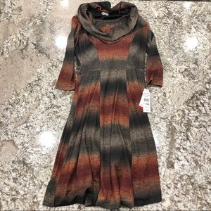 Sweater Dress with Brown Lining Dress NWT